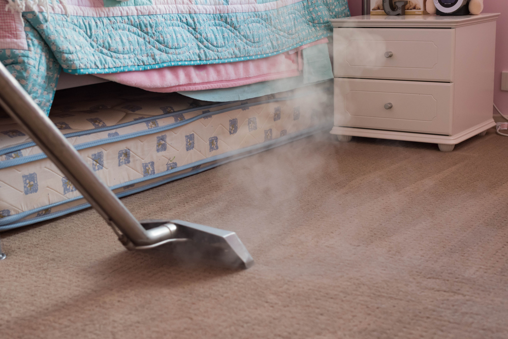 Does Steam Cleaning Carpets Get Rid Dust Mites