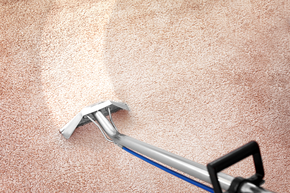 Which Better Dry Or Steam Carpet Cleaning