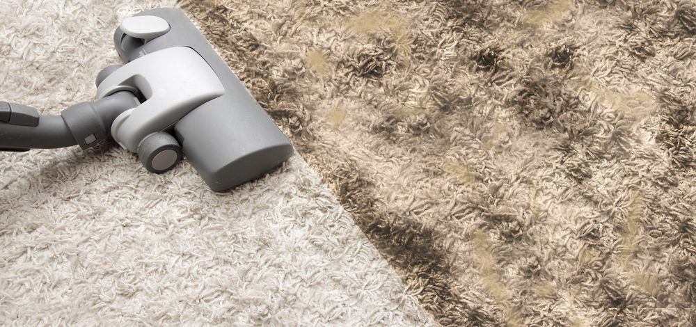 How Easily Germs Accumulate On Carpet