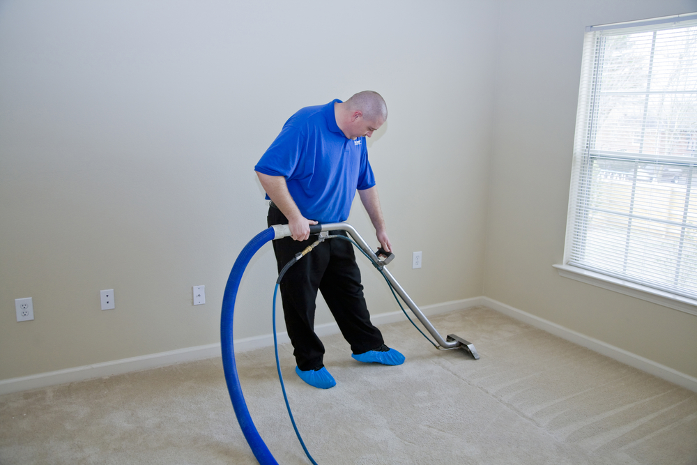 How Easily Germs Accumulate On Carpet 1