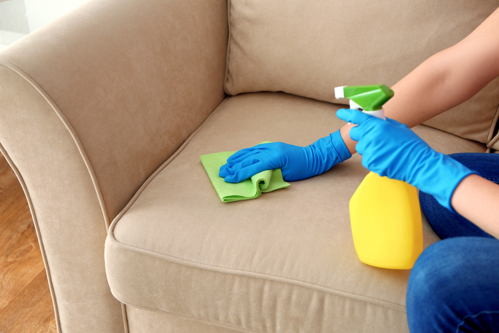 How Get Pet Urine Out Upholstery