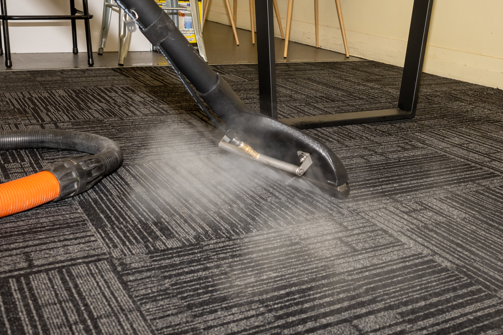 How Often Should Steam Clean Carpet