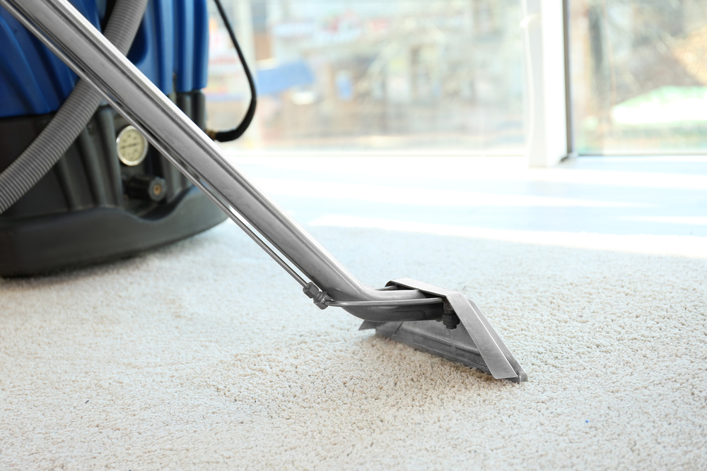 Does Steam Cleaning Remove Mould From Carpet