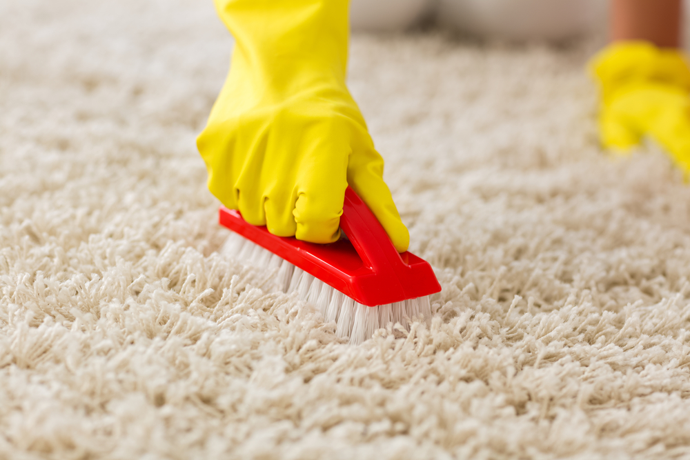 How Clean Rugs Carpets Without Getting Wet